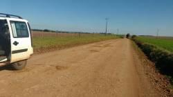 estrada-luiz-4