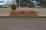 Limpeza pública vem recebendo atenção da administração municipal