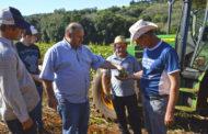 PREFEITURA AUXILIA AGRICULTORES NA PRODUÇÃO DE SILAGEM